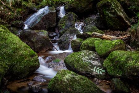 2013_08_Gernsbacher-Wasserfälle_0001_web